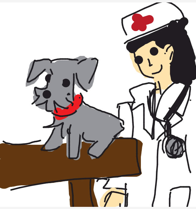 How To Draw Veterinary